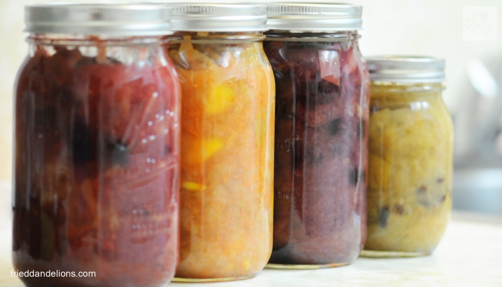 L to R: Cherry Cranberry, Carrot Mango, Blueberry, and Raisin