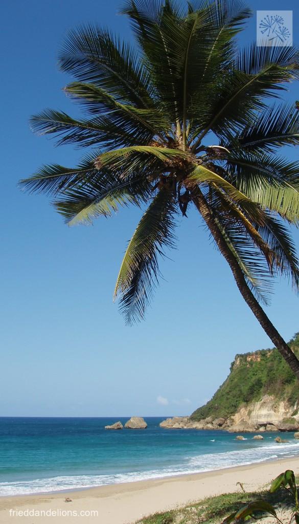 Our favorite beach in the world—Auguadilla, Puerto Rico