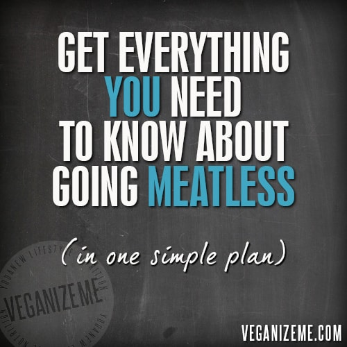 veganizeme-500_simple-plan