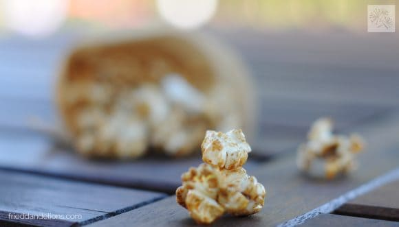 close up of piece of Spice Cookie Kettle Corn