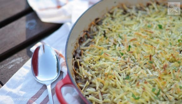 fried dandelions // hash brown shepherd's pie