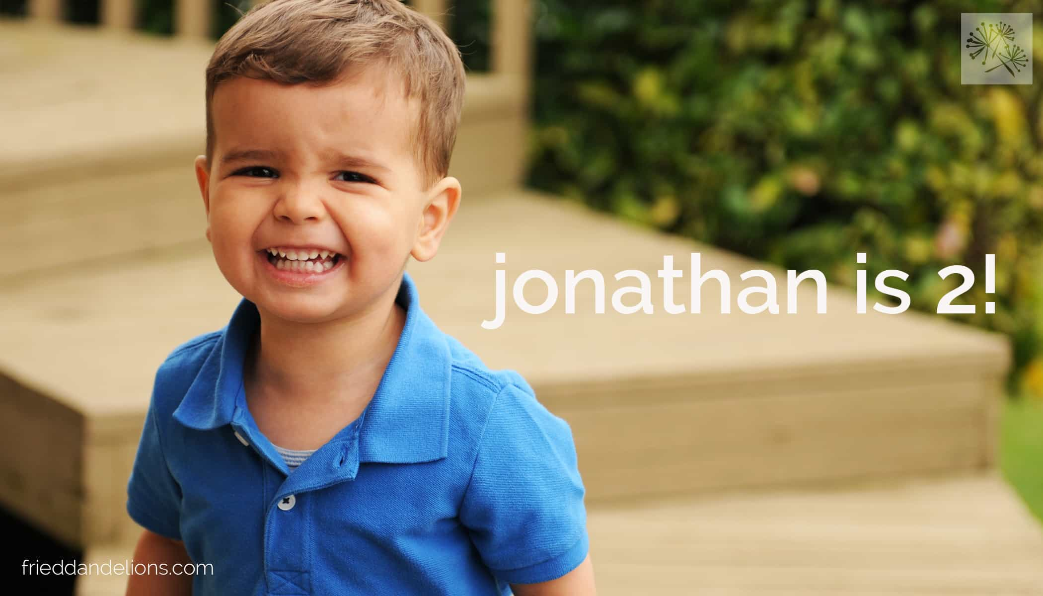 fried dandelions // jonathan is 2!